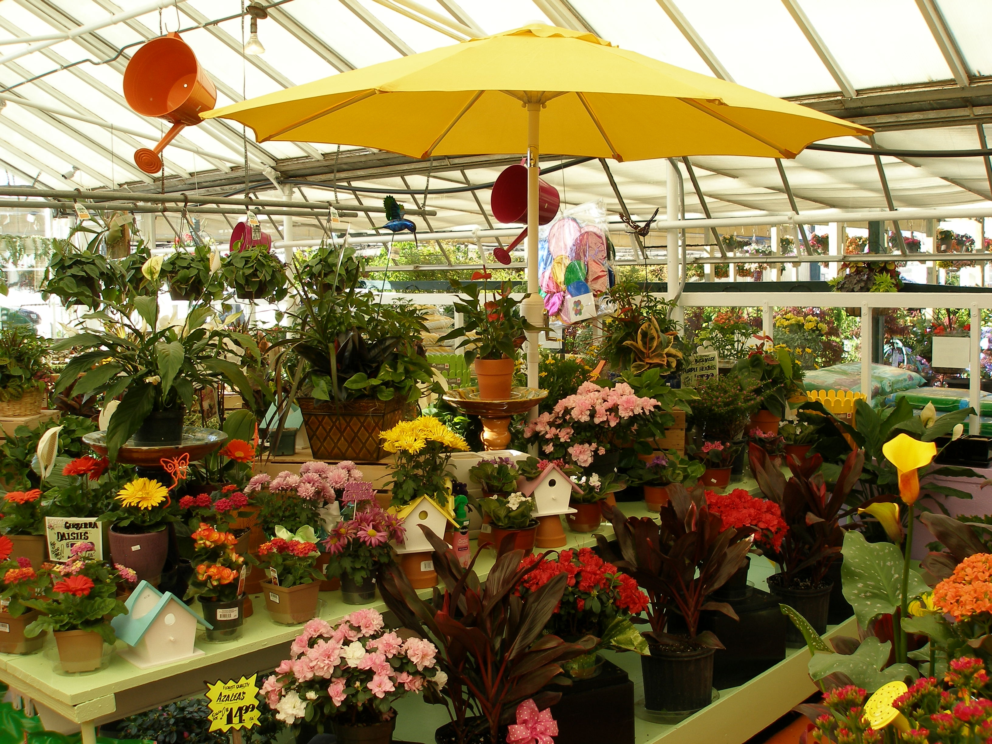 Florists and garden centers – Halfway Intelligence